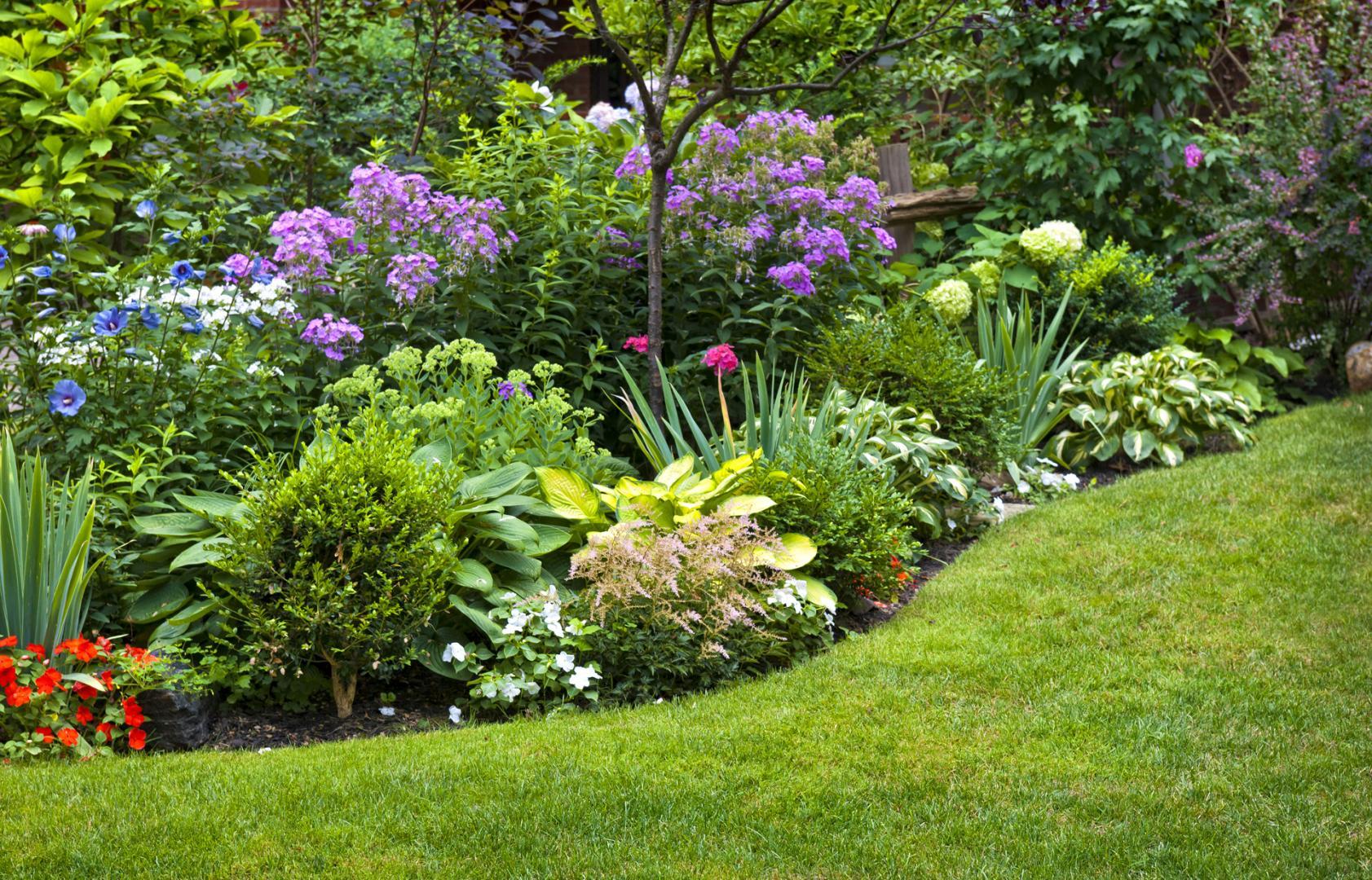 embellir votre jardin